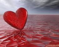 Kasih Sayang Tidak Boleh Dijual Beli