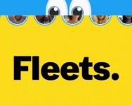 Feature terbaru twitter iaitu 'Fleet' sama seperti Instagram Story